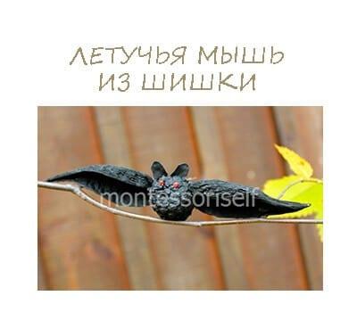 Летучая мышь из шишки