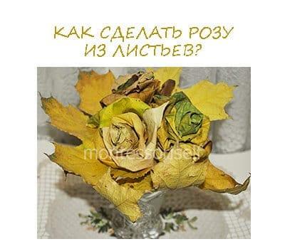 Как сделать розу из листьев?