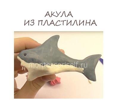 Акула из пластилина своими руками