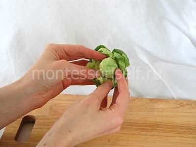 Раскрываем капусту