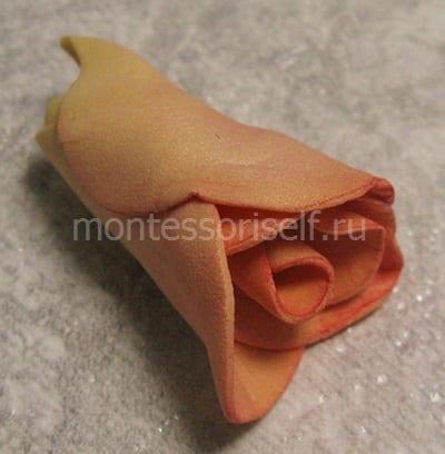 Серединка цветка розы
