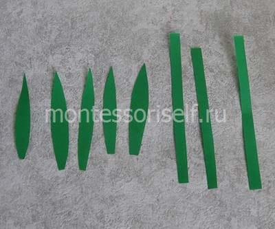 Листики и стебли