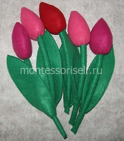 Тюльпаны разных оттенков