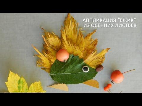 """Аппликация """"Ежик"""" из осенних листьев"""