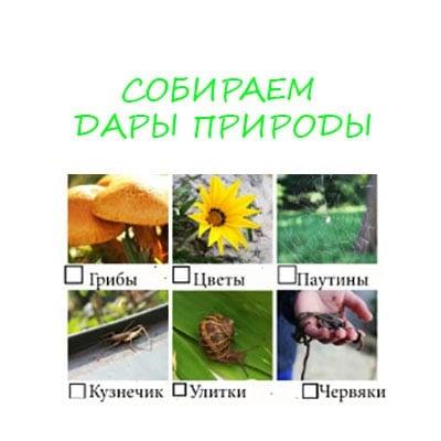 дары природы