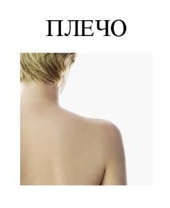 Картинка плечо