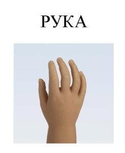 Картинка рука