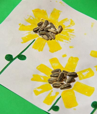 Рисунок подсолнухи с настоящими семечками