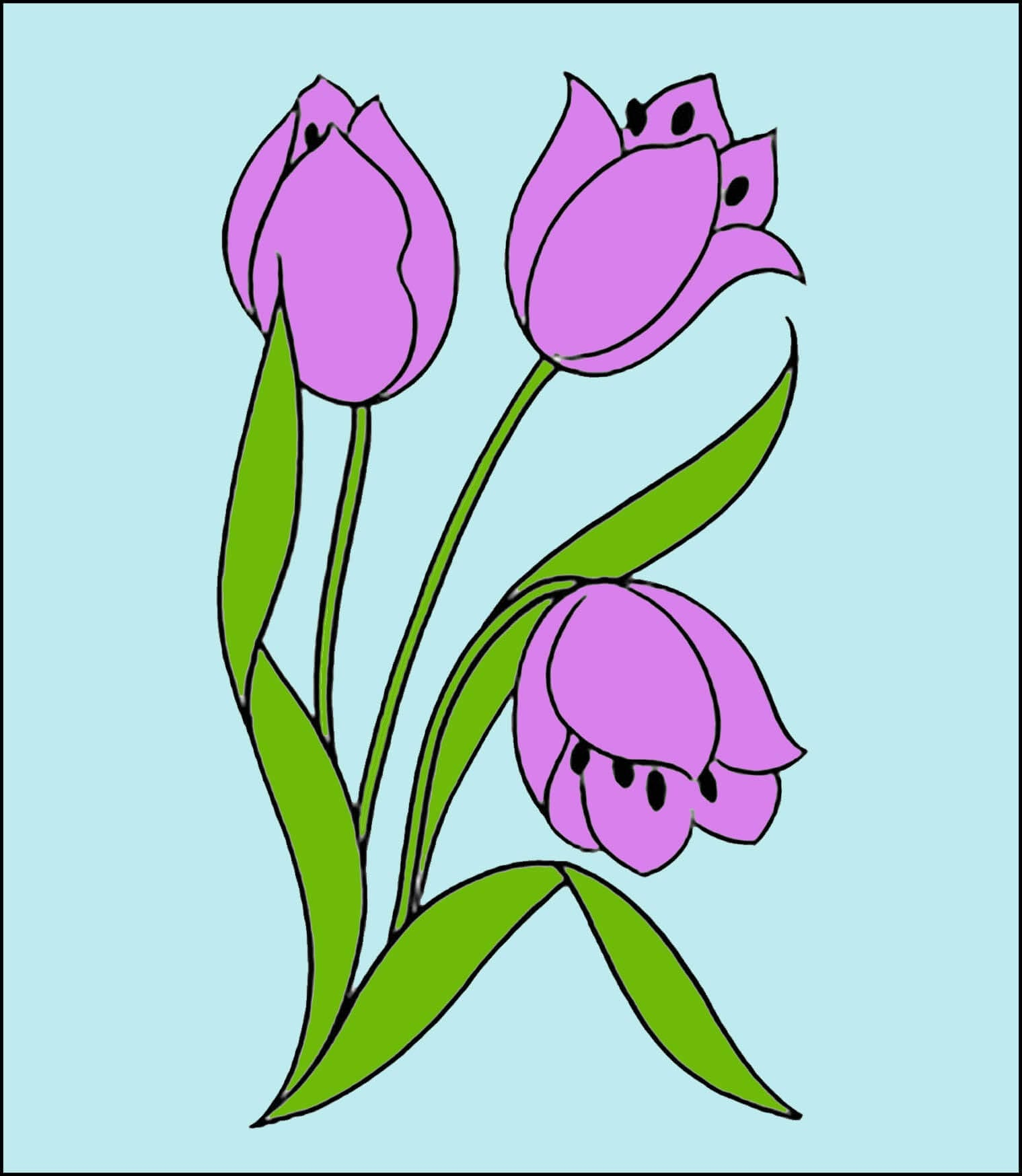 Картинка тюльпаны