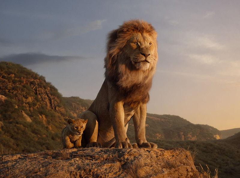 """Изображения львов из мультика """"Король лев"""""""