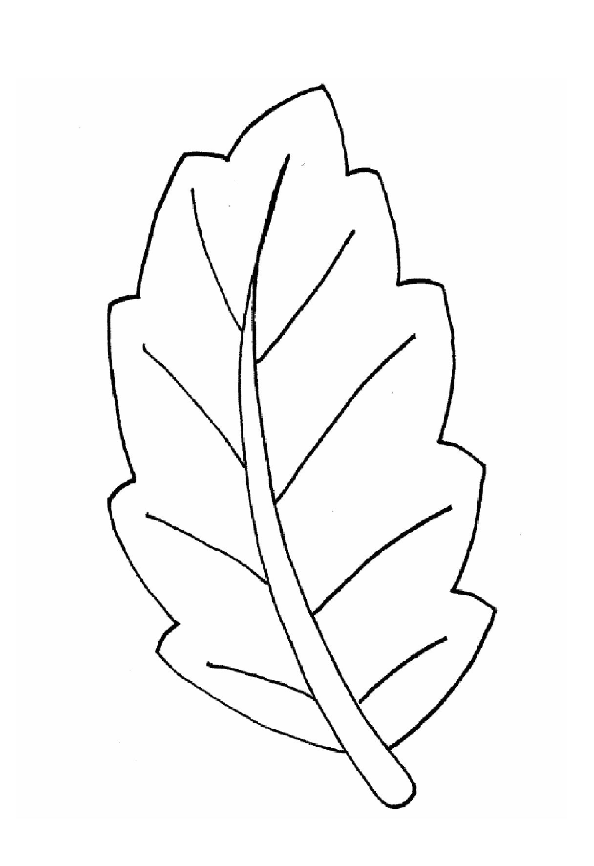 Раскраска листики осенние