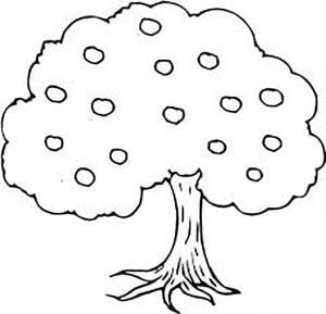 яблоня раскраска