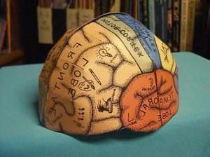 Шляпа с мозгом
