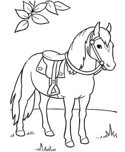 раскраска лошадь 5