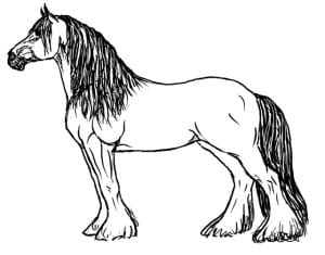 Раскраска лошадь 3