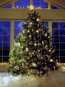 Новогодняя елка картинка для детей 16