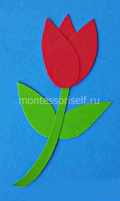 Аппликация тюльпан на 8 марта