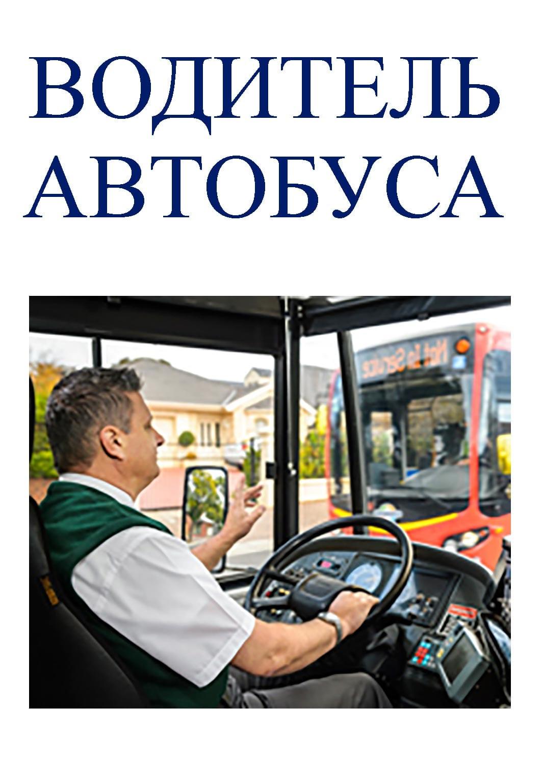 Картинки для водителя автобуса