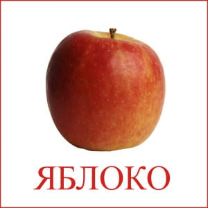 Apple picture for kids 1