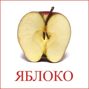 Apple picture for children 2