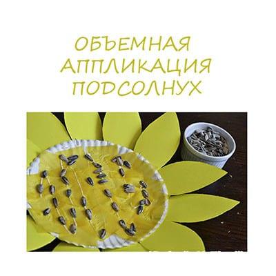 Поделка из семечек подсолнуха: ТОП 5 мастер-классов с фото и видео