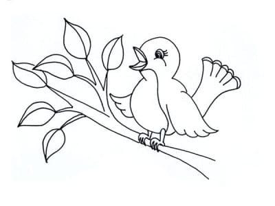 Милая птичка