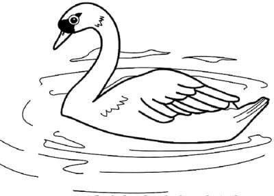 Раскраска лебедь на озере