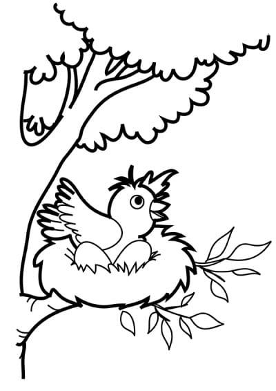 Веселая птичка в гнезде