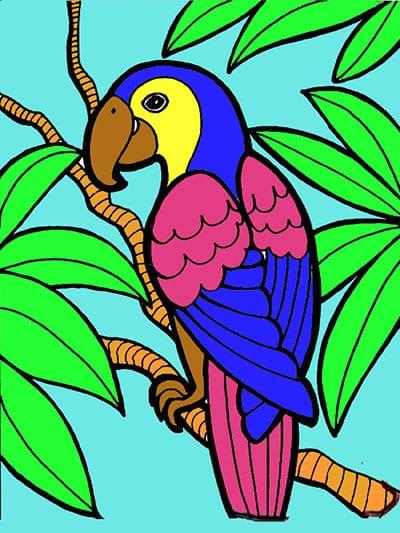 Цветной экзотический попугай