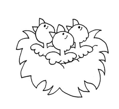 Три птенца в гнезде