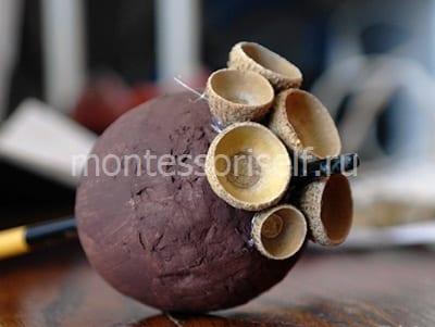 Вставляем шляпки желудей в пенопластовый шарик