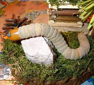 Змея из шляпок желудей