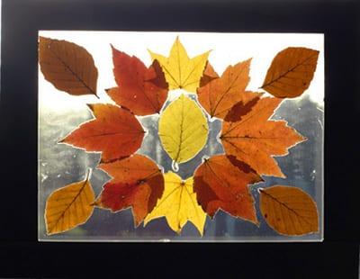 Узор из осенних листьев на окошко.