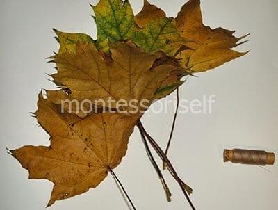 Листья клена и нитки