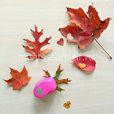 Листья и сердечки из листьев