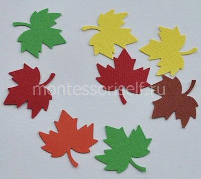 Вырезаем несколько листочков