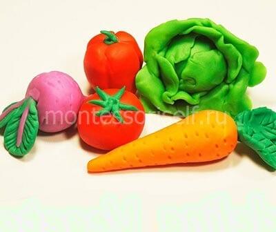 Осенняя поделка овощи из пластилина