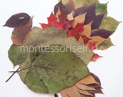 Павлин из листьев