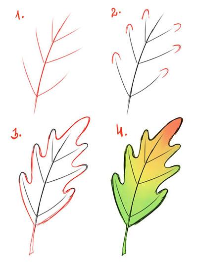 Рисунок дубовый лист пошагово