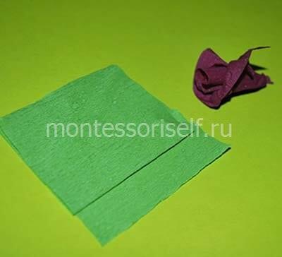 Полоса зеленого картона
