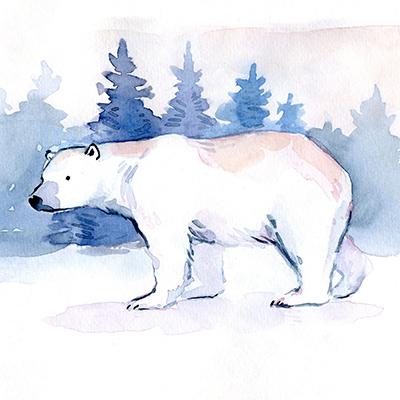 """Рисунок """"Белый медведь"""""""