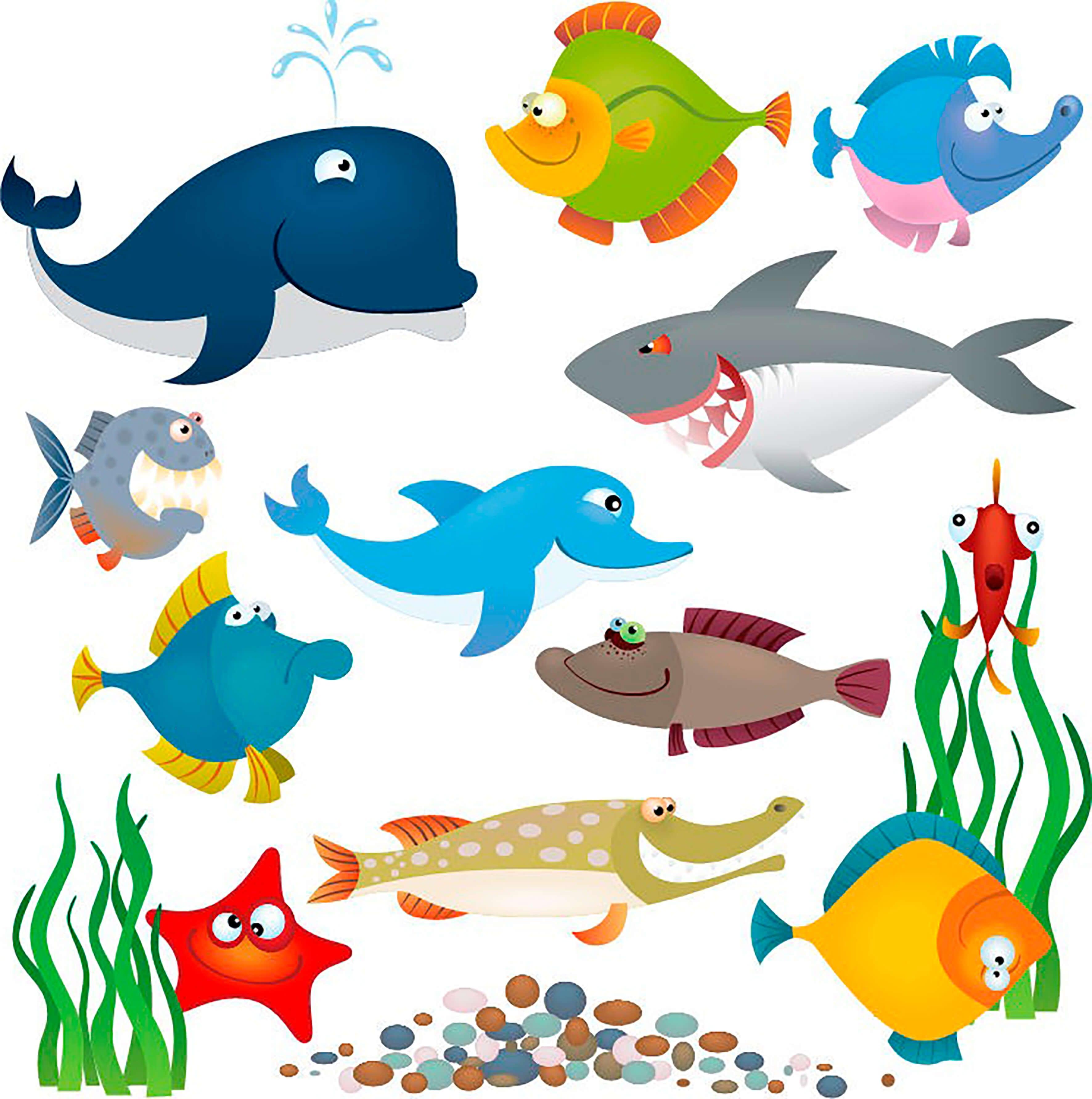 Морские жители в картинках