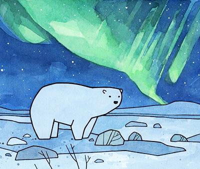 Рисунок белый медведь и северное сияние
