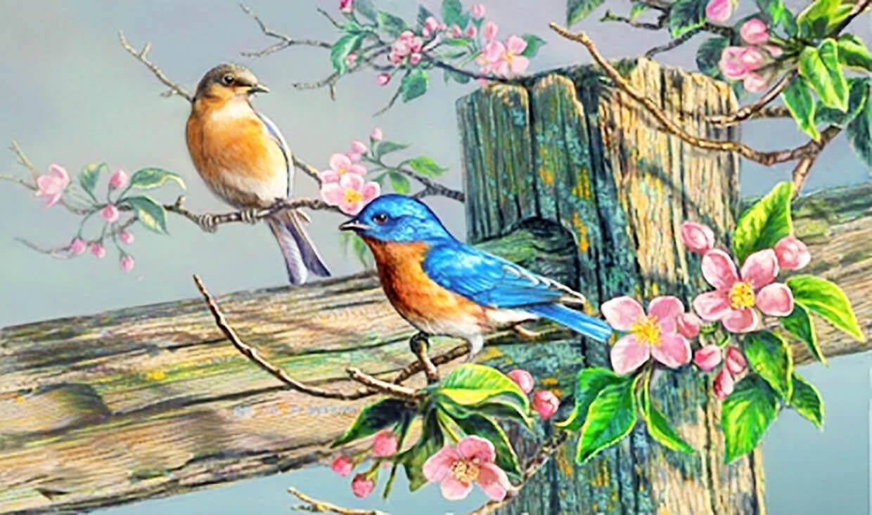 Весенние птички картинка 1