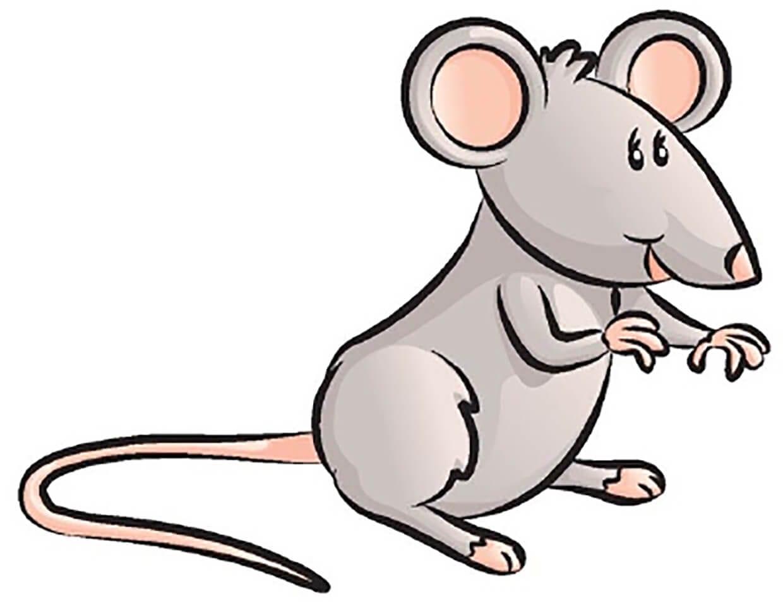 Мышка картинка для детей 11