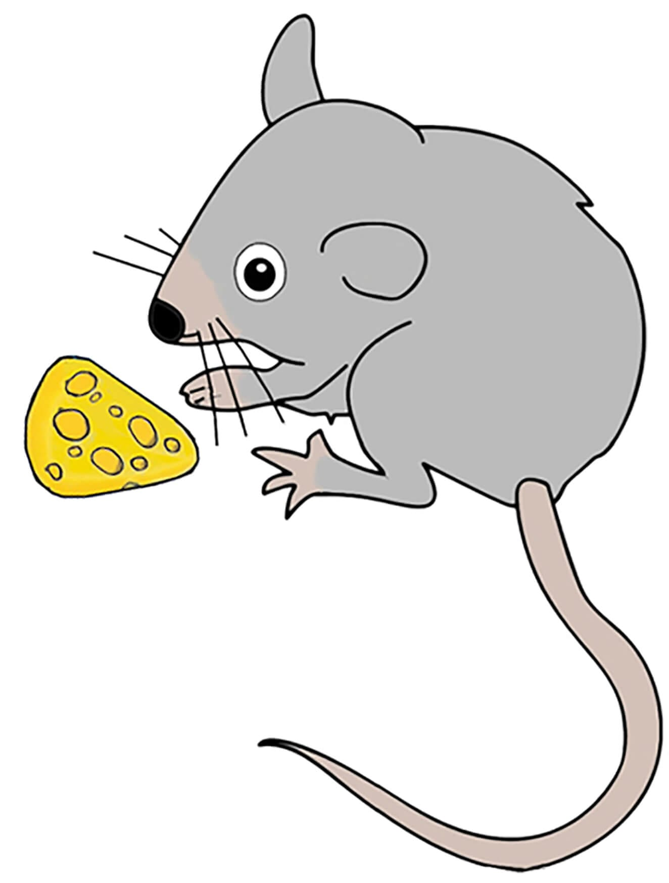 Мышка с сыром картинка 2