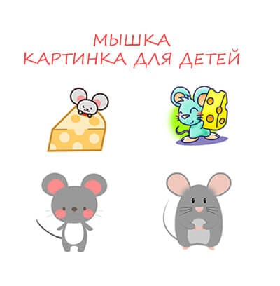 Mouse pictures for children