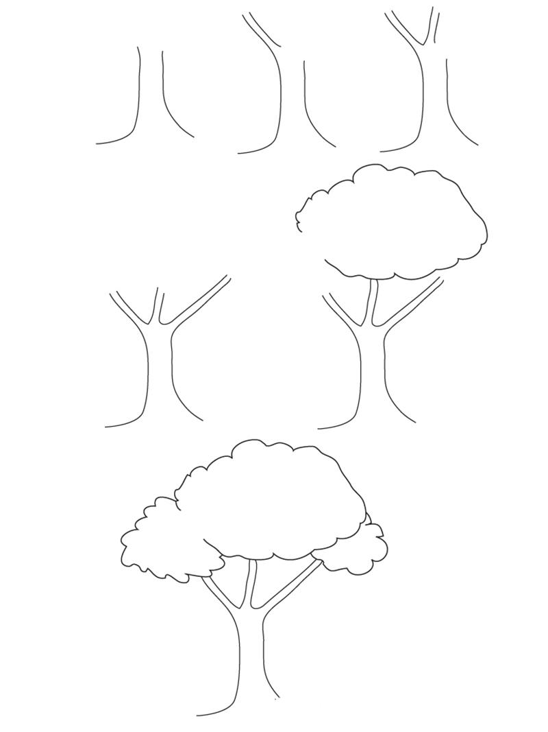 Пошаговый рисунок Дерево