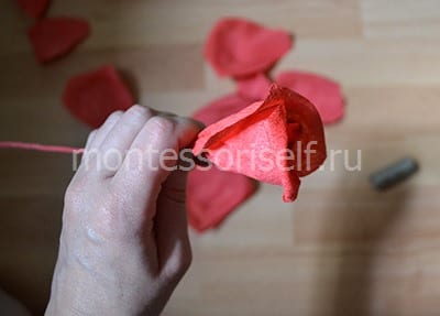 Fit the petals