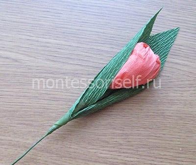 Тюльпан с конфетой